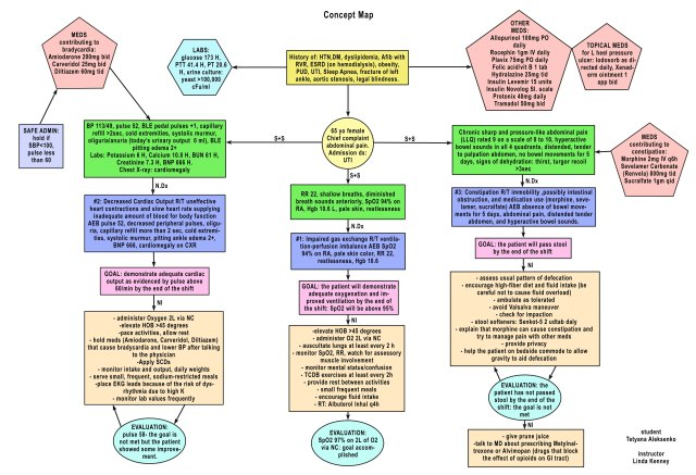 Nursing Concept Map